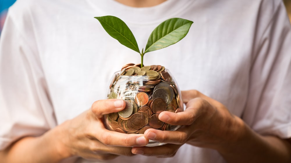 dividends with coins and a plant in a jar